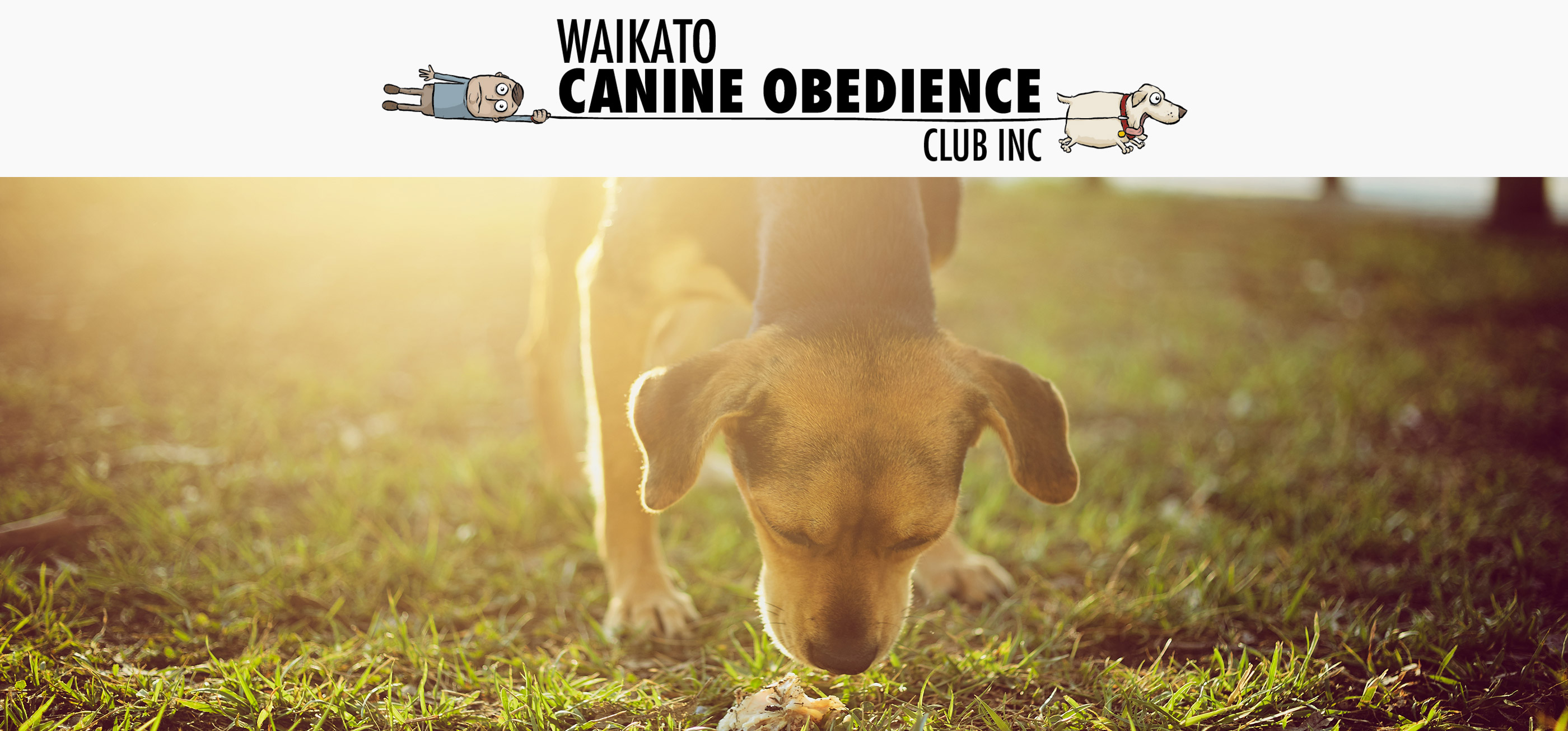 Waikato Canine Obedience Club
