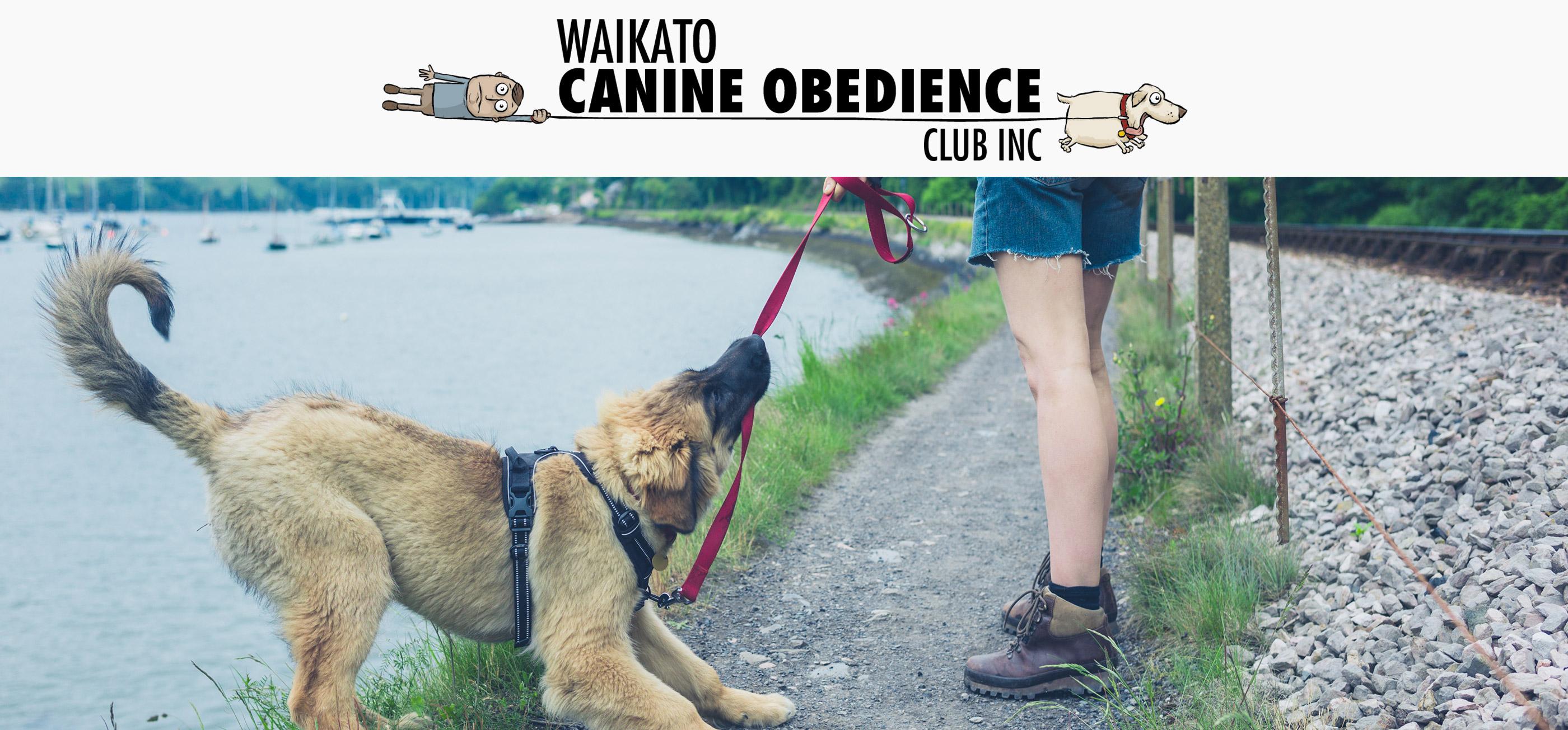 Waikato Canine Obedience Club
